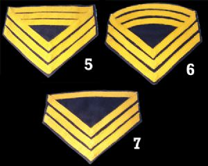 Union Cavalry Insignia Chevrons, Various Ranks